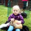 Kaninklappning på Noradagarna
