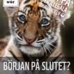 Tiger_Slutet_250x360