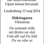 Linneaerisksson-T-20140517