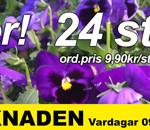 plantmarknaden-v-19