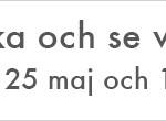 socialdemokraterna-linde-728