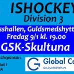 GSK_Skultuna