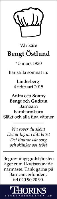 BengtÖstlund_T_20150113