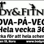 BodyFitness_v36_3