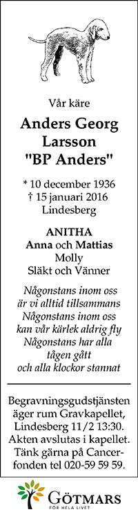 AndersGeorgLarsson_G_20160127
