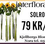 Kjellbergs2016_v29_1